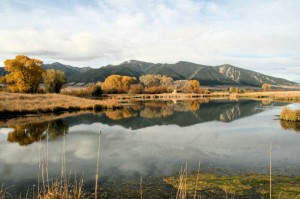 MontanaTroutAholics - Your fly fishing guides in Western Montana